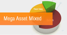 Mega Asset Mixed